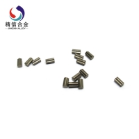 Carbide Pin (16)