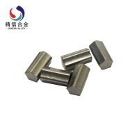Carbide Pin (17)